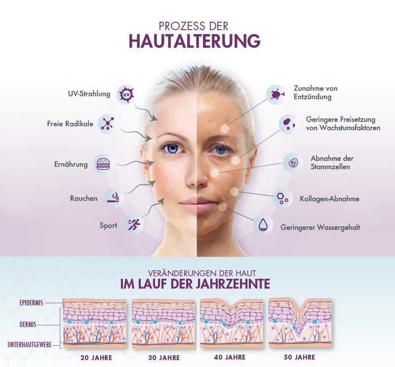 Hautalterung - Eigenbluttherapie mit Exokine als Beauty Activator