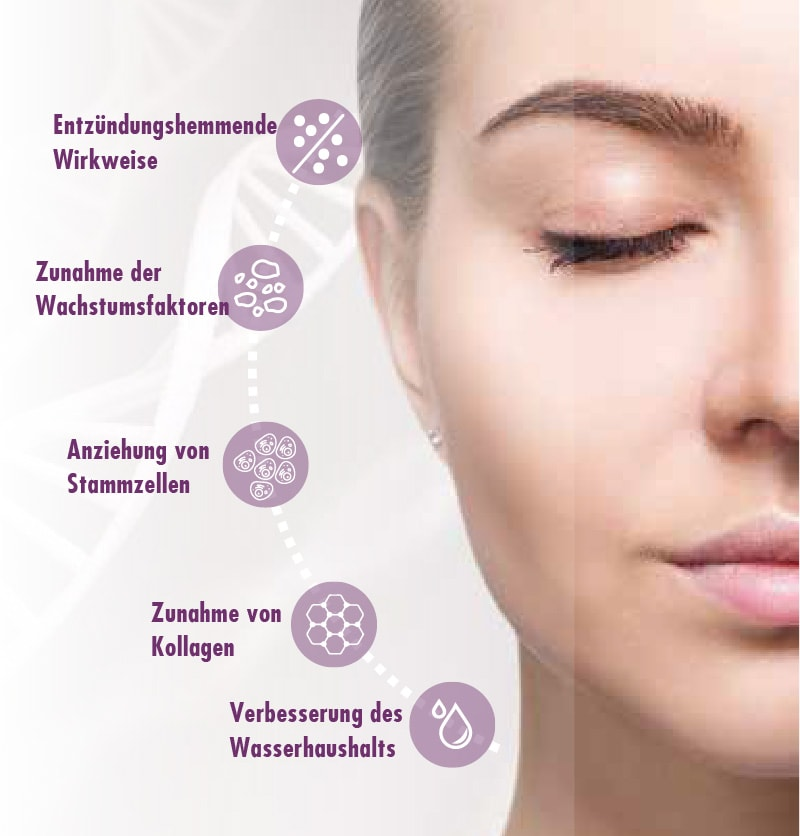 Wirkung - Eigenbluttherapie mit Exokine als Beauty Activator
